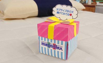 マニフレックスのサプライズBOX