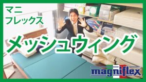 YouTubeメッシュウイング_福岡